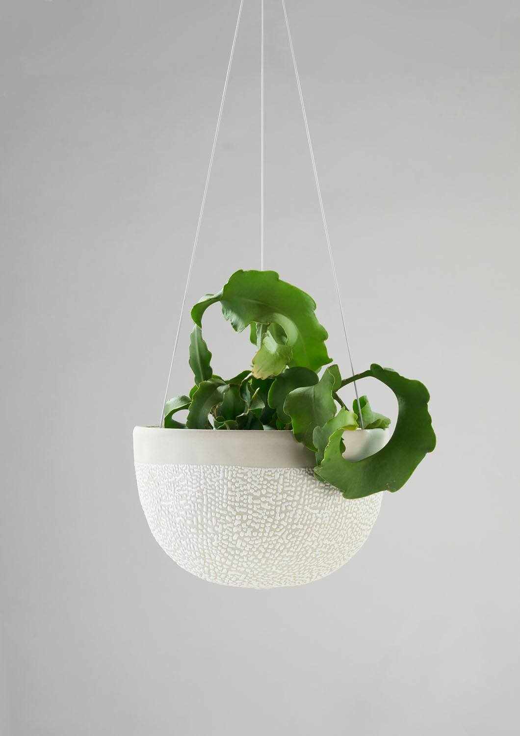 Angus & Celeste White Water Bead Hanging Planter Mid