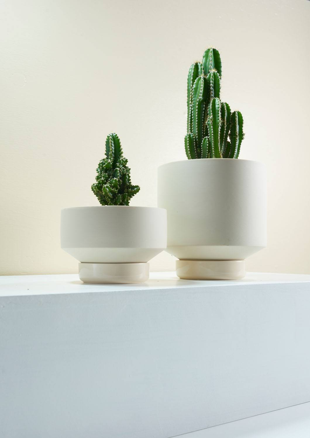 Angus & Celeste Collectors Gro Pots Clay Styled